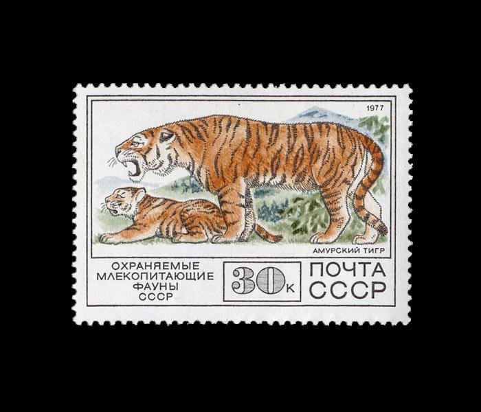 Скупка марок СССР фото